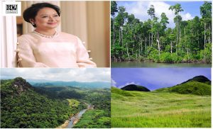 How the Philippines Can Build Back Greener After COVID-19
